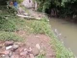 Hallan a mujer sin vida cerca del centro de Xicotepec